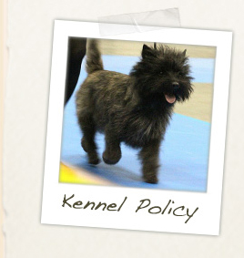 Kennel Policy